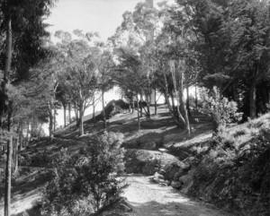MtDCross1930Road